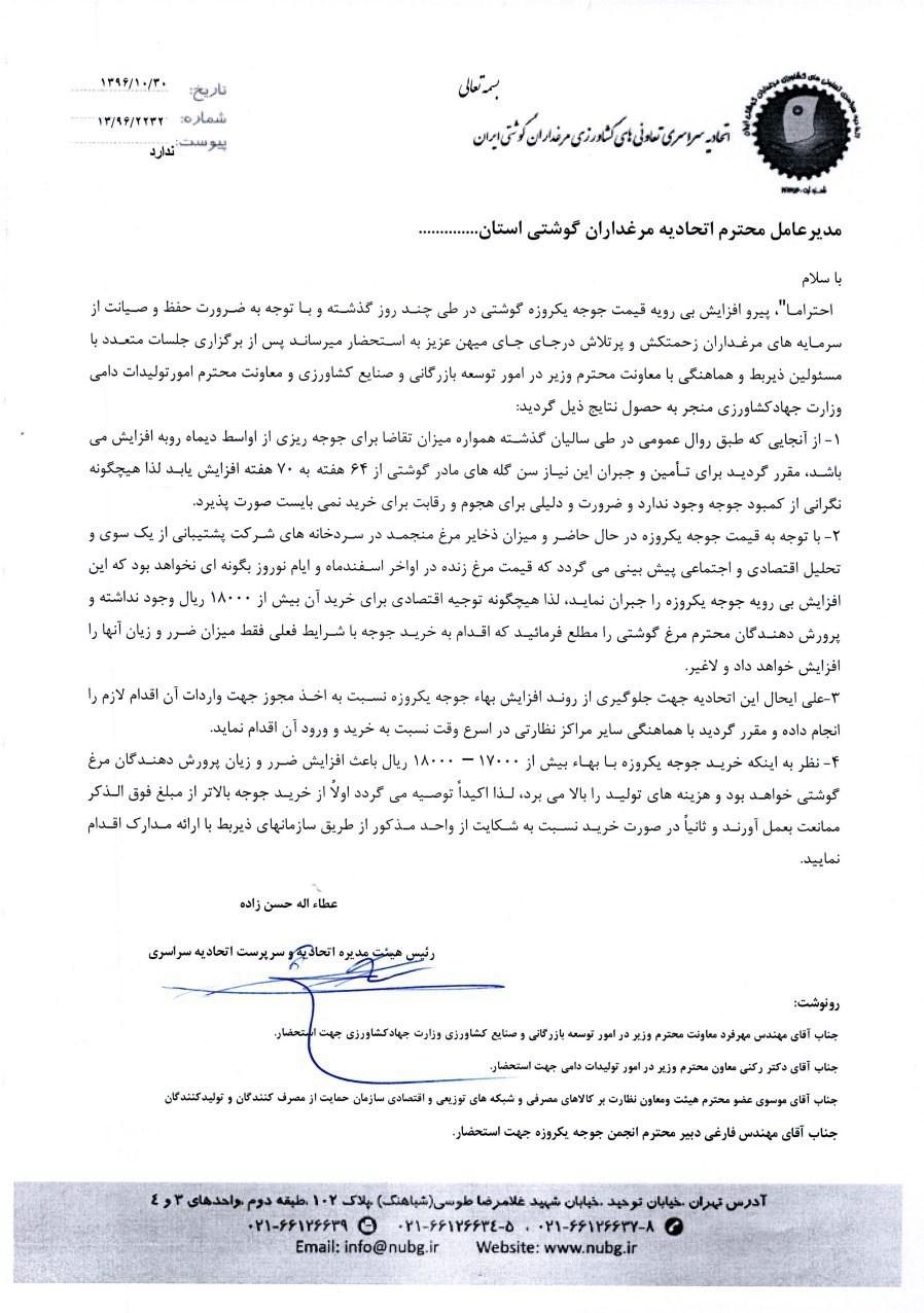 واردات جوجه خارجی برای تنظیم بازار +سند